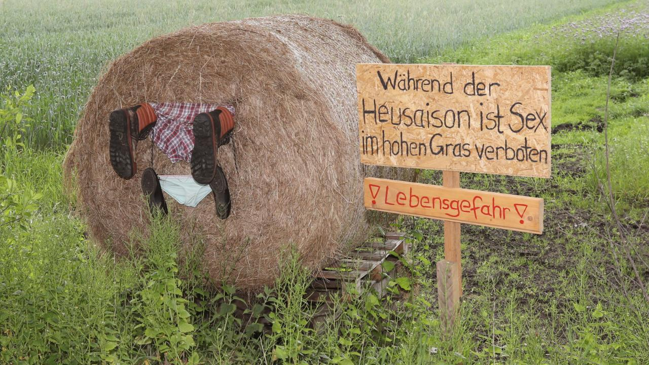Bauern-Posse in Norderstedt - Sex-Verbot im Kornfeld